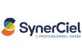 Qualification Synerciel